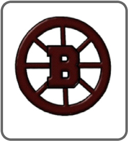 Bayonne High School Hockey